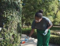 Websérie conta história de projeto que já capacitou 3 mil jovens em jardinagem