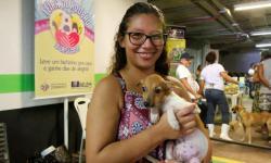 Belém recebe mais uma feira de adoção de cães e gatos