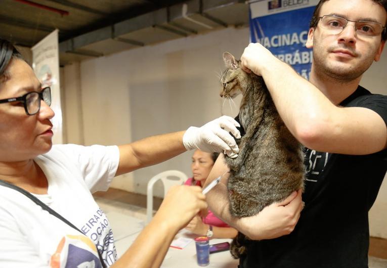 Shopping de Belém recebe Feira de Adoção de Pets neste sábado (8)
