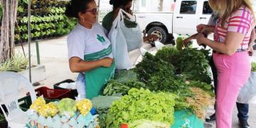 Feira da Agricultura Familiar ocorre nesta quinta (29), em Marituba