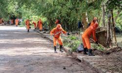 Limpeza emergencial é feita em diversos pontos em Belém