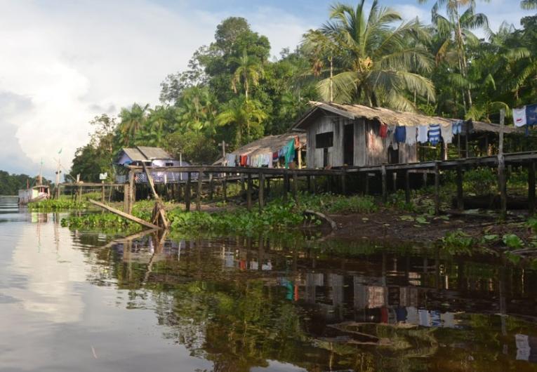 Reserva extrativista no Marajó inicia extração sustentável de madeira