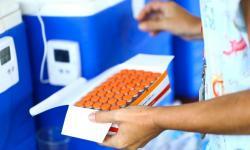 Remessas de insumo para vacinas são aguardadas pela Fiocruz