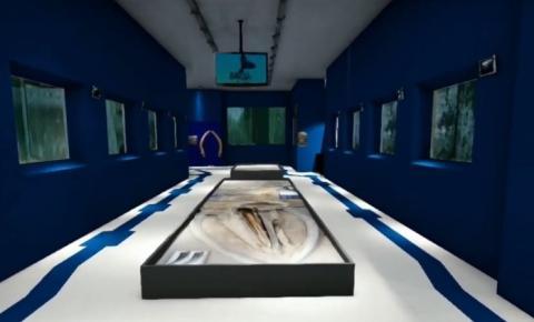 Aquário do Museu Goeldi ganha versão virtual