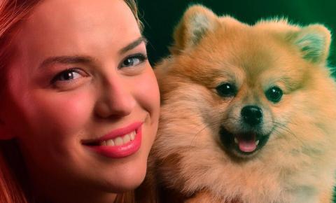Sessão de cinema aberta a animais de estimação está de volta