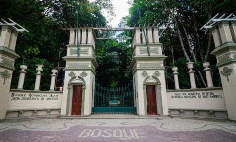 Bosque Rodrigues Alves passará por revitalização