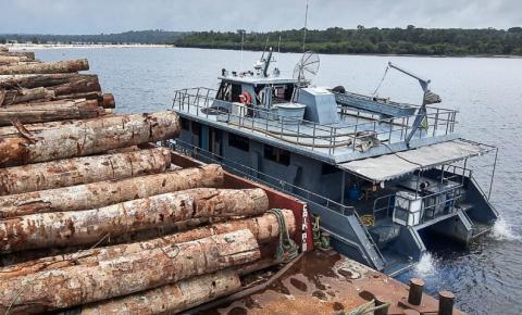 Pará terá Forças Armadas no combate a crimes ambientais